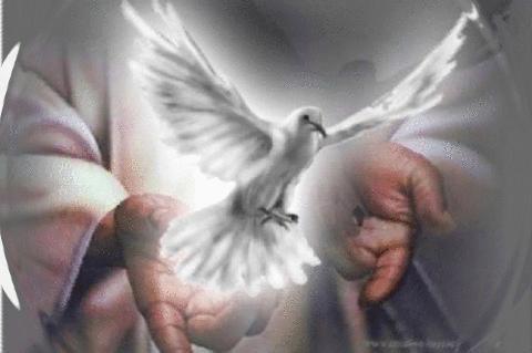 Frases sobre el Espíritu Santo