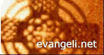 Resultado de imagen de evangeli net