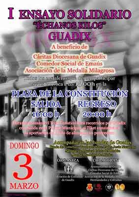 solidario-guadix