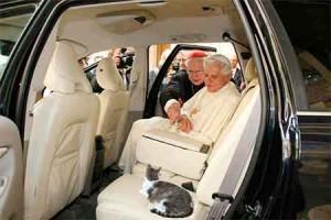 Benedicto-XVI-gato