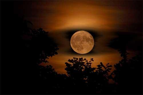 Plegaria a la luz de la primera luna de primavera (Noche