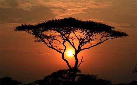 puesta-de-sol