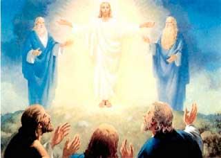 transfiguracion1