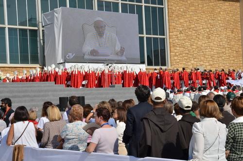 papa mensaje martires beatificacion