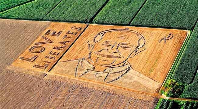 papa-francisco-campo-imagen