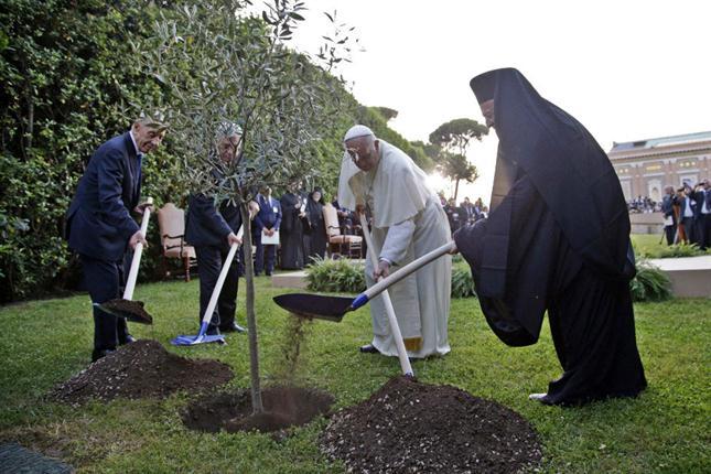 papa francisco tierra santa
