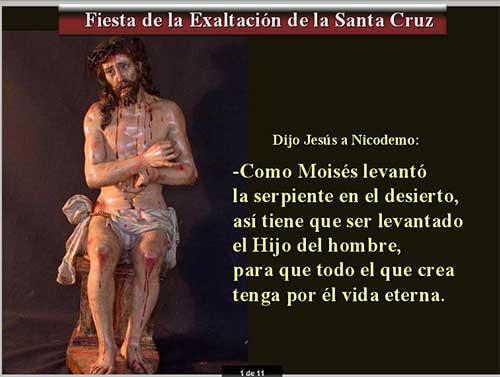 exaltacion-cruz