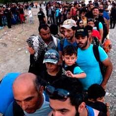 refugiados-zamora