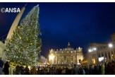 Plaza San Pedro-Navidad