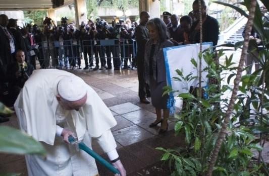 arbol-planta-Kenia-Papa-Francisco