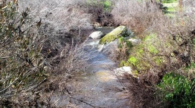 paisaje-agua-adviento