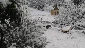 Buenafuente-nevado