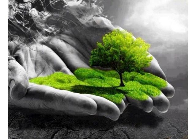 creación-tierra