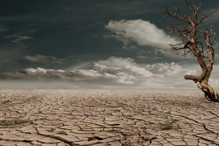 El dinero será para afrontar la emergencia de la sequía que ha ...