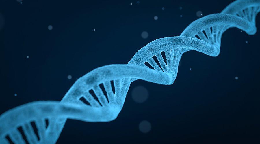 Lea también: China exige suspender actividad científica de bebés modificados genéticamente