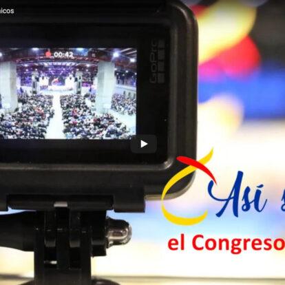 ¿Cómo se hizo el Congreso de Laicos?
